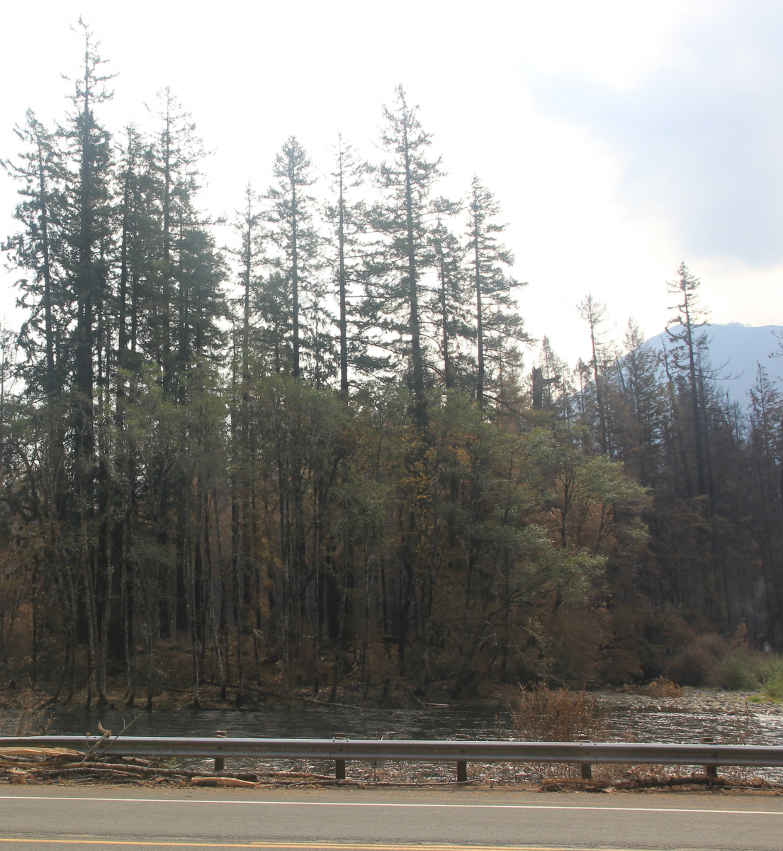 HWY 126 and 15 Road junction Sept 22