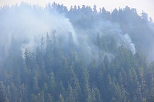 Smoke rising from Watershed 2 slope