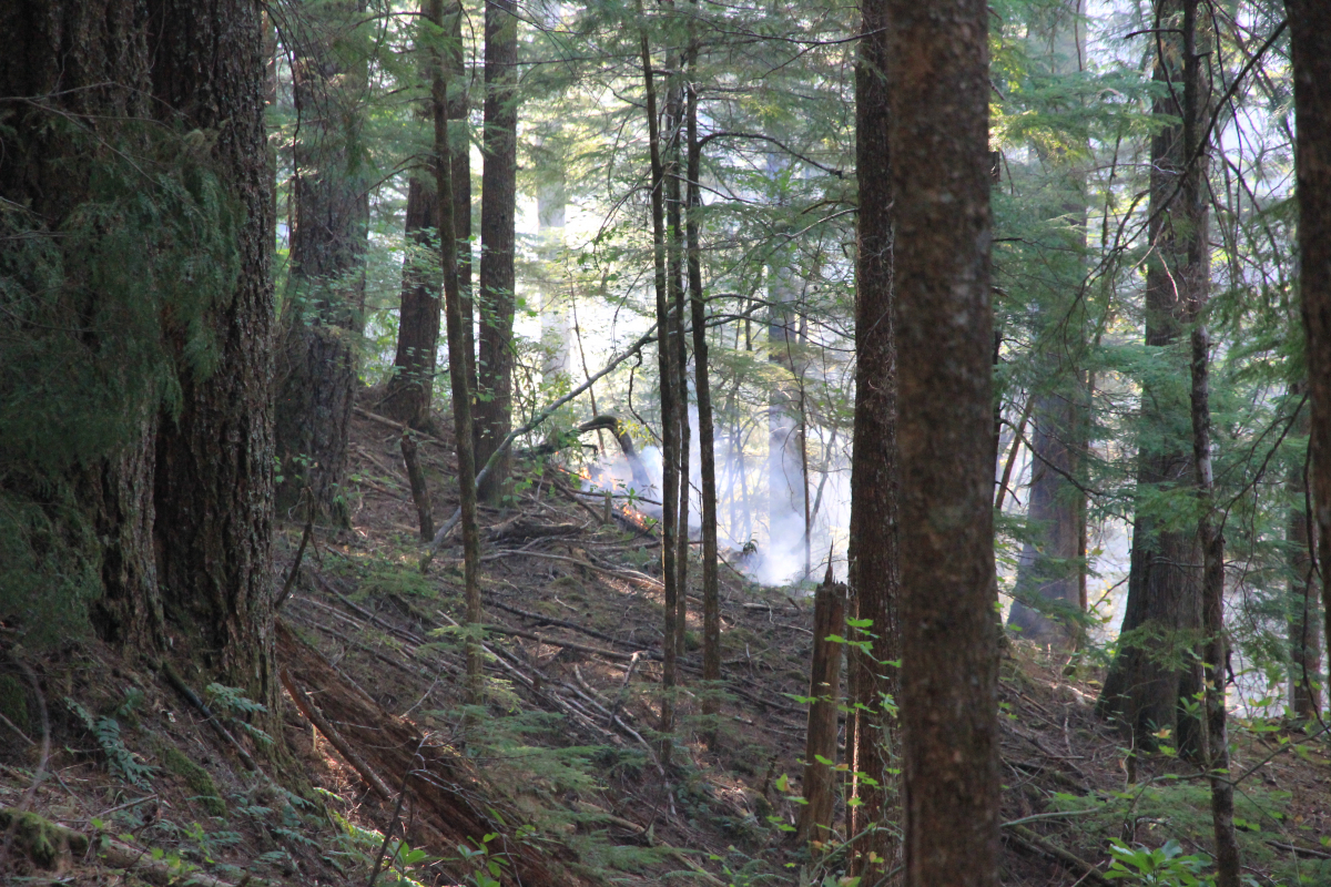 Fire in Watershed 2, Oct 6