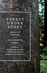 Forest Under Story book cover