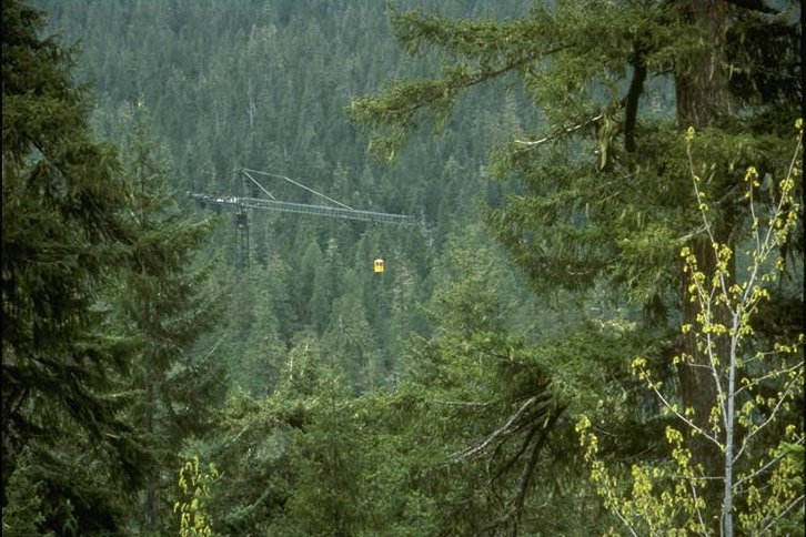 Wind River Experimental Forest Canopy Crane Dedication. Gondola boom and jib high above the canopy. Photographed by Al Levno ..... Date 4/29/95 . & H. J. Andrews Experimental Forest - CD: AAC