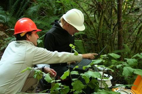 Field Work in Watershed 1