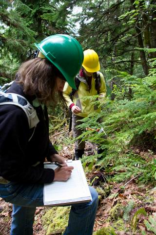 Researchers collect data on plant phenology and insects. by Lina DiGregorio