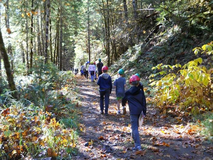 Elementary school students visit the Andrews Forest